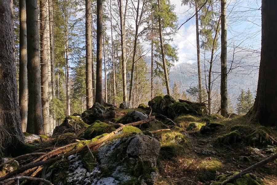 Berge im März